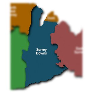 Surrey Downs map